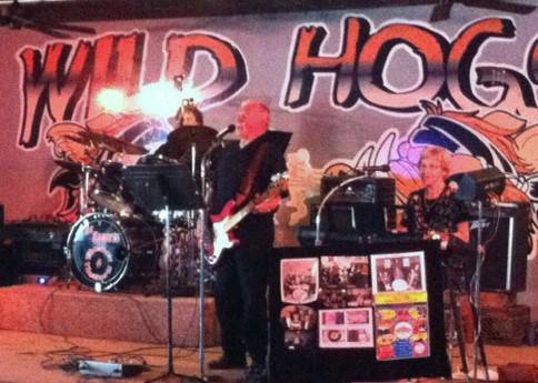 The Do's & Don'ts Band at Wild Hogs in Walford, Iowa April 5, 2015