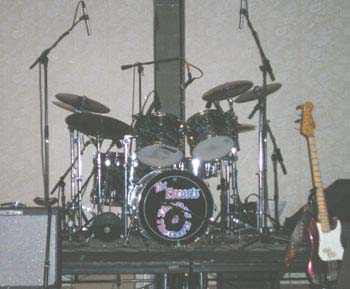 drum-turtles-2